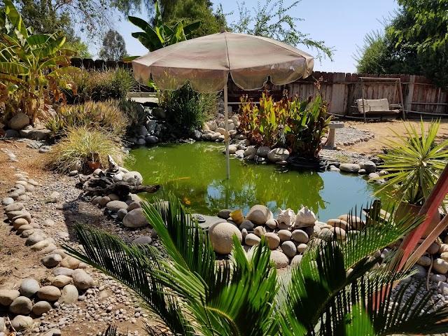 Bonadelle Ranchos-Madera Ranchos California