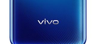 Vivo X50 VivoX50 pro, Vivo X50 pro+