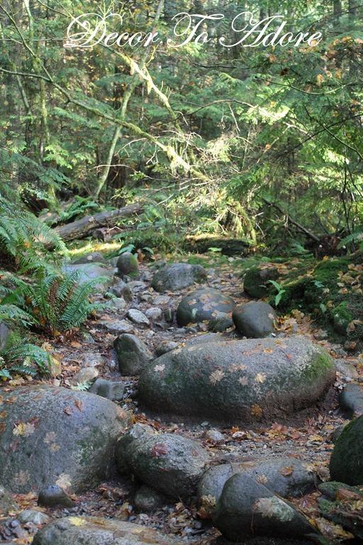 Whistler Lynn Canyon Stanley Park 115