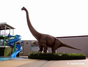 Dinosaurs Alive Water Theme Park At Ksl Resort