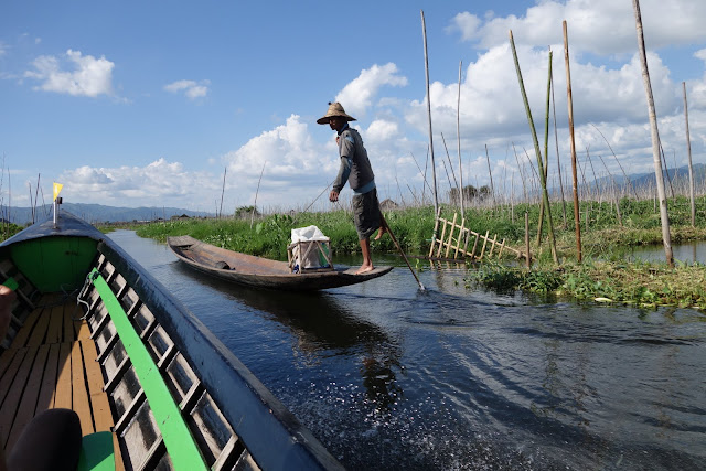 Romping on the Fertile Waters: The Bounties of Inle Lake, Myanmar