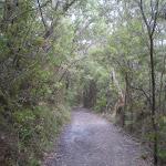 Shortcut Track (7529)