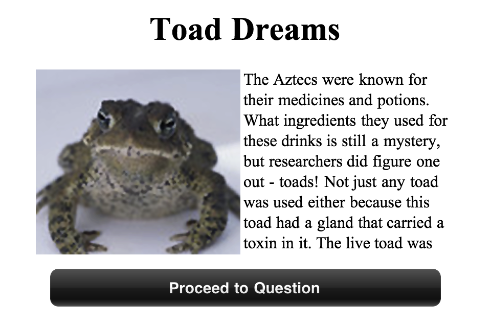 MiniMod Reading for Inferences Image 1