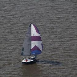 Dauphin Island Race 2013 081