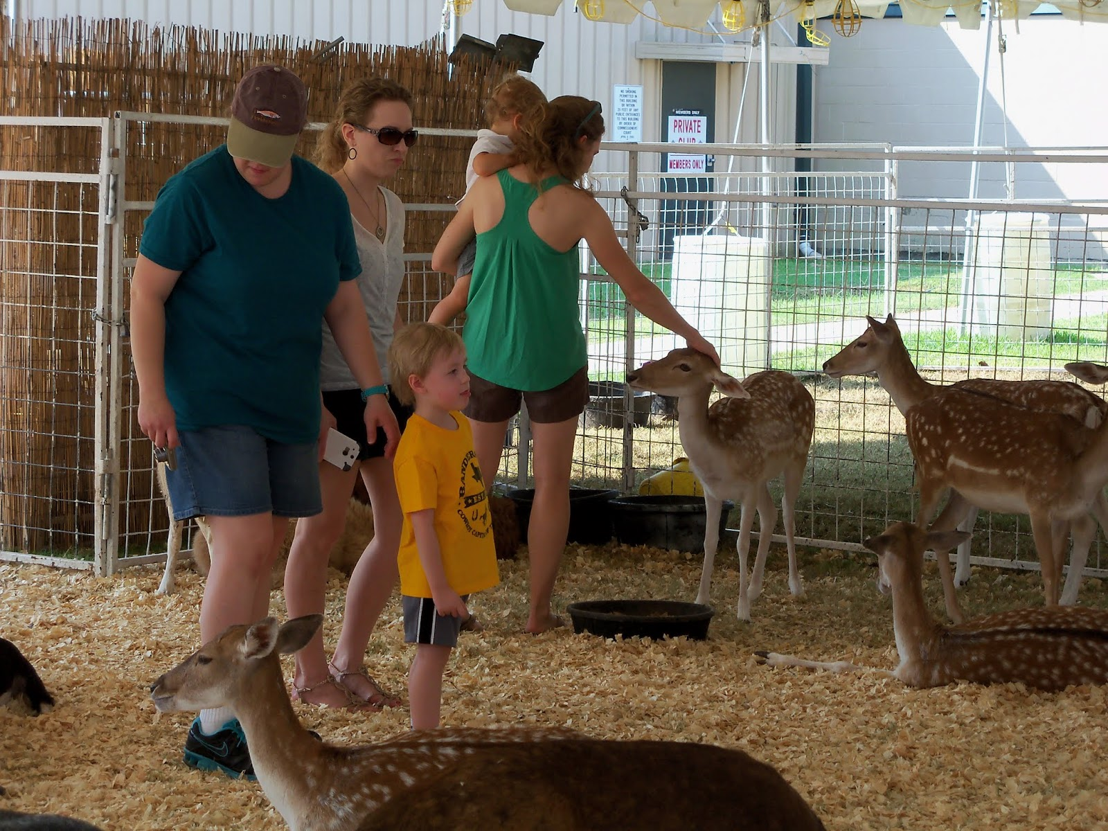 Fort Bend County Fair 2015 - 100_0183.JPG