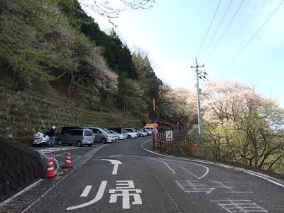ひょうたん桜駐車場