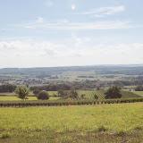 2013 vendanges du chardonnay - 2013%2B09%2B28%2BGuimbelot%2Bvendanges%2Bdu%2BChardonnay%2B195.jpg