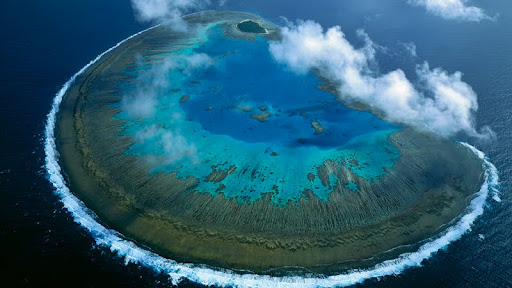 Lady Musgrave Island, Great Barrier Reef, Queensland, Australia.jpg