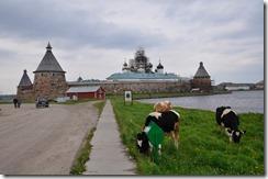 4 kremlin vue Est