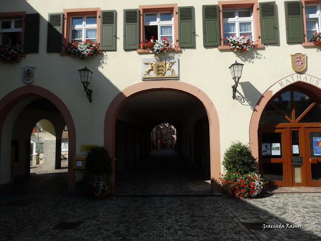 passeando - Passeando pela Suíça - 2012 - Página 14 DSC04891