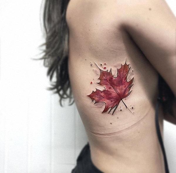 esta_aquarela_maple_leaf