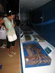 Otros calamares expuestos en el Centro del Calamar Gigante
