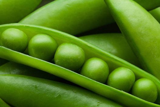kacang polong sebagai salah satu makanan penyubur