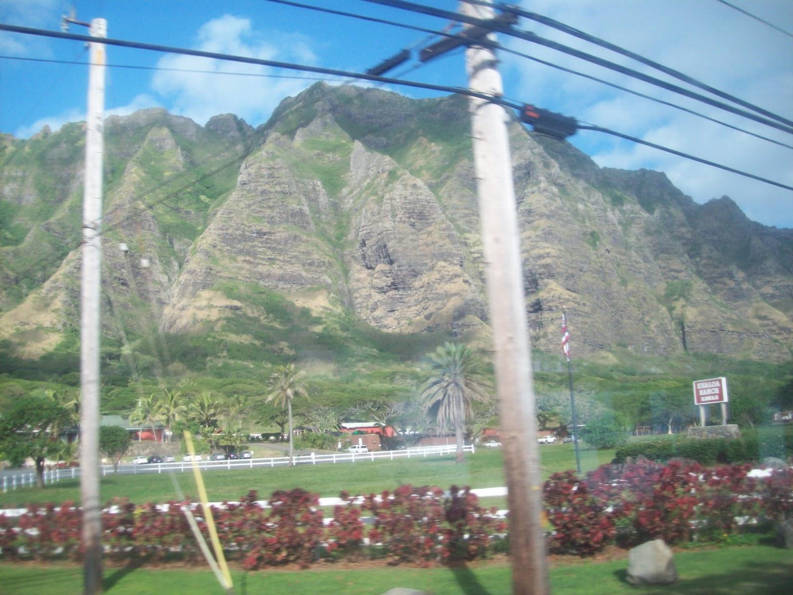 Hawaii Day 3 - 114_1052.JPG