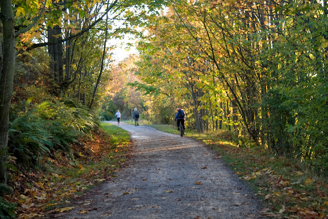 It's not difficult to see why the Interurban Trail is one of the most popular trails in Bellingham. The variance in foliage, ecosystems, views and branching side trails have much to offer the day hiker or biker.Credit: Aimee Frazier
