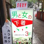 pulin-jp.com in Akihabara, Tokyo, Japan