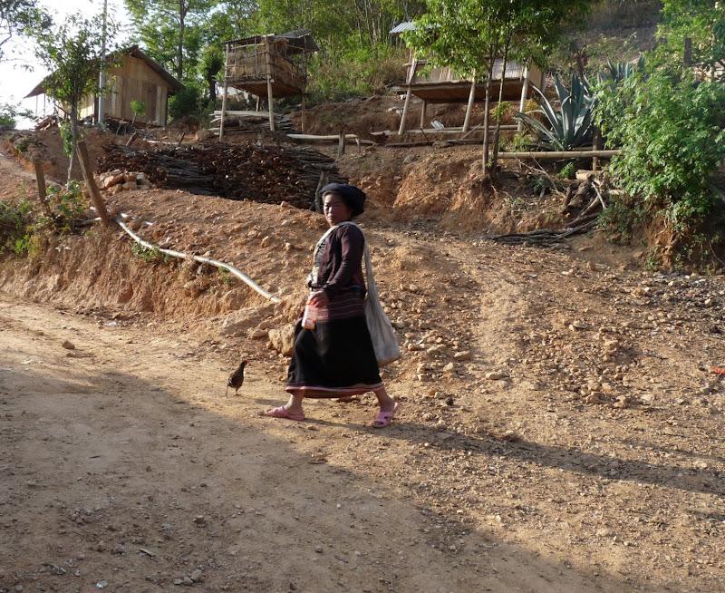 Chine: randonnée xishangbanna, région de Bada - Picture1%2B892.jpg