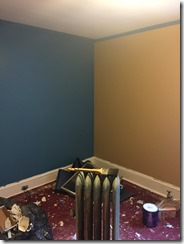 Boys room reno
