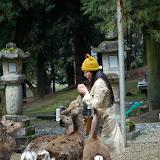 2014 Japan - Dag 8 - jordi-DSC_0566.JPG