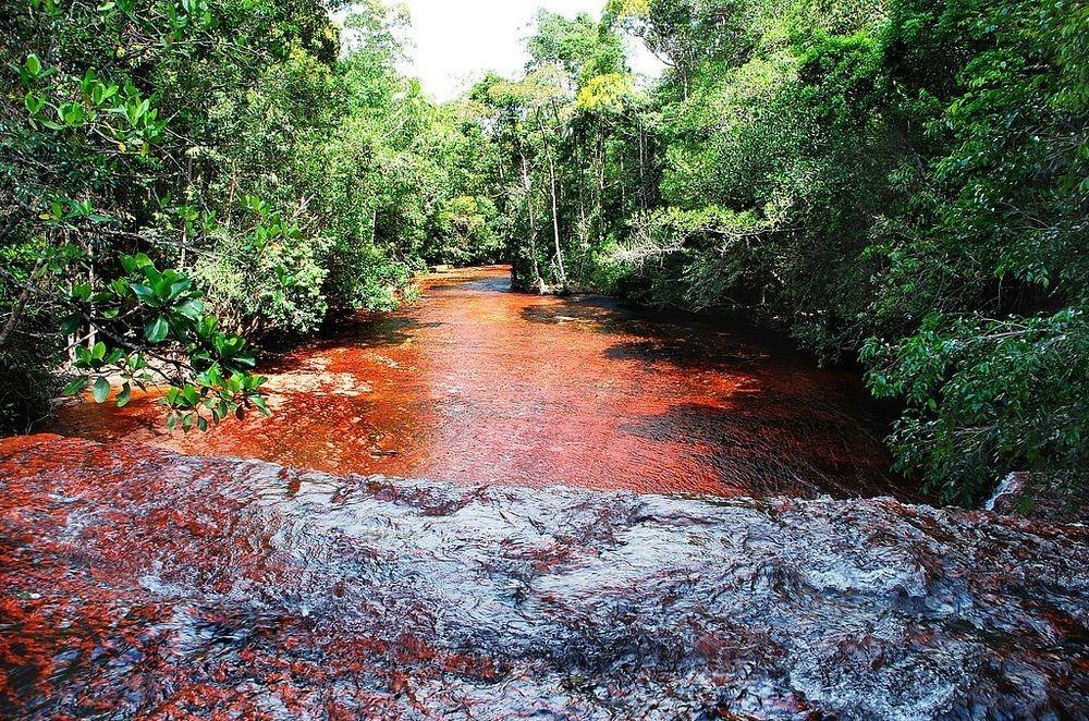 jasper-creek-venezuela-5