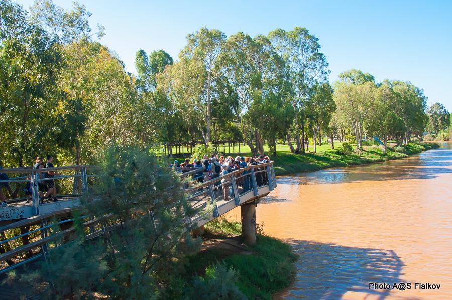 На мосту реки Яркон. Экскурсия по реке Яркон в Тель Авиве и Яффо. Гид в Израиле Светлана Фиалкова.