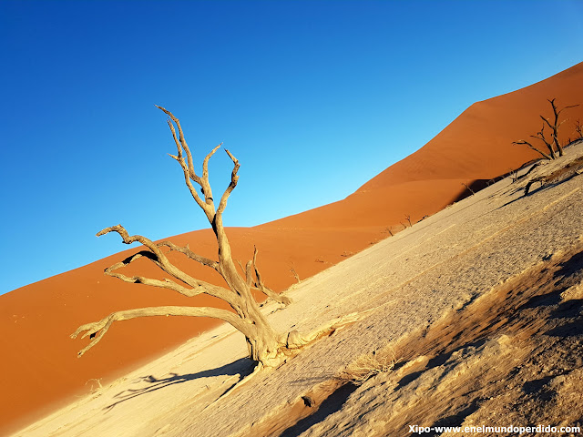 dead-vley-namibia.jpg