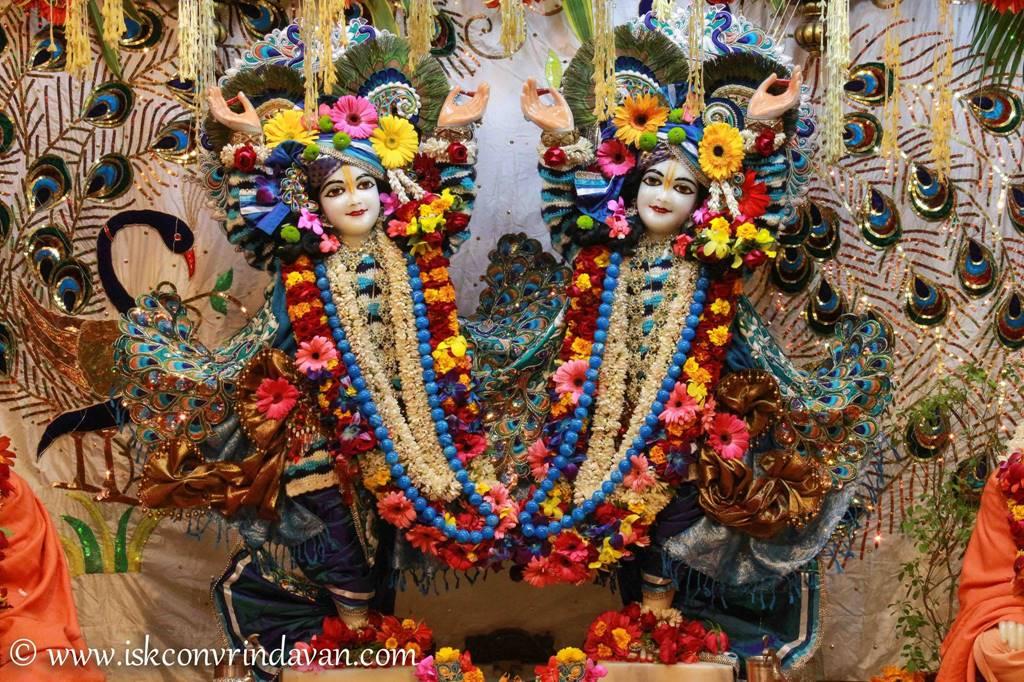 ISKCON Vrindavan Sringar Deity Darshan 25 Jan 2016 (18)