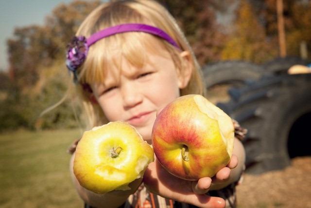 [apples+photo%5B5%5D]