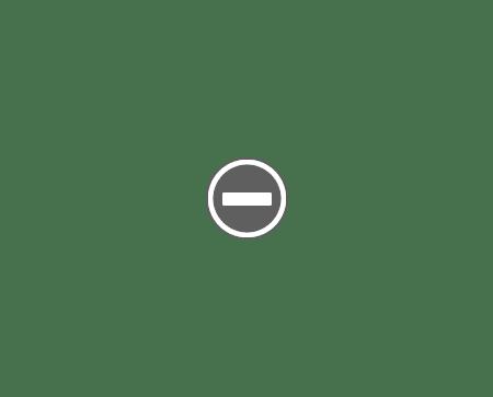 Combin frigorifica FULL NoFrost SAMSUNG RL60GZGIH CONGELATORUL Combina frigorifică SAMSUNG RL60GZGIH   Full NoFrost