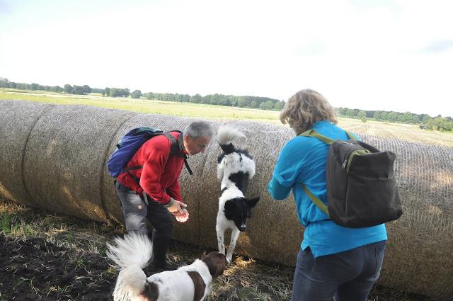 Survival voor Baas en Hond 2012 - DSC_0146.JPG