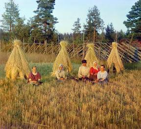 На жнитве. Вологодская губерния, 1909 г. (Сергей Михайлович Прокудин-Горский)