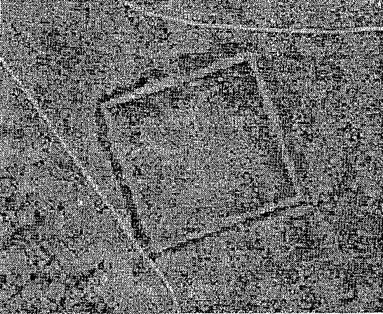 Одна из версий происхождения Тoргайских геоглифов 1