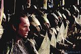 Imladris Elrond