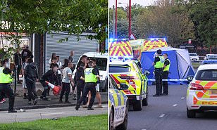 Six arrested over murder of 14 year old black boy stabbed to death in street