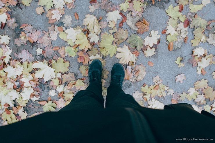 vlog-vienna-hemerson-paranagua-blogdohemerson BRNO-VIENNA (1)