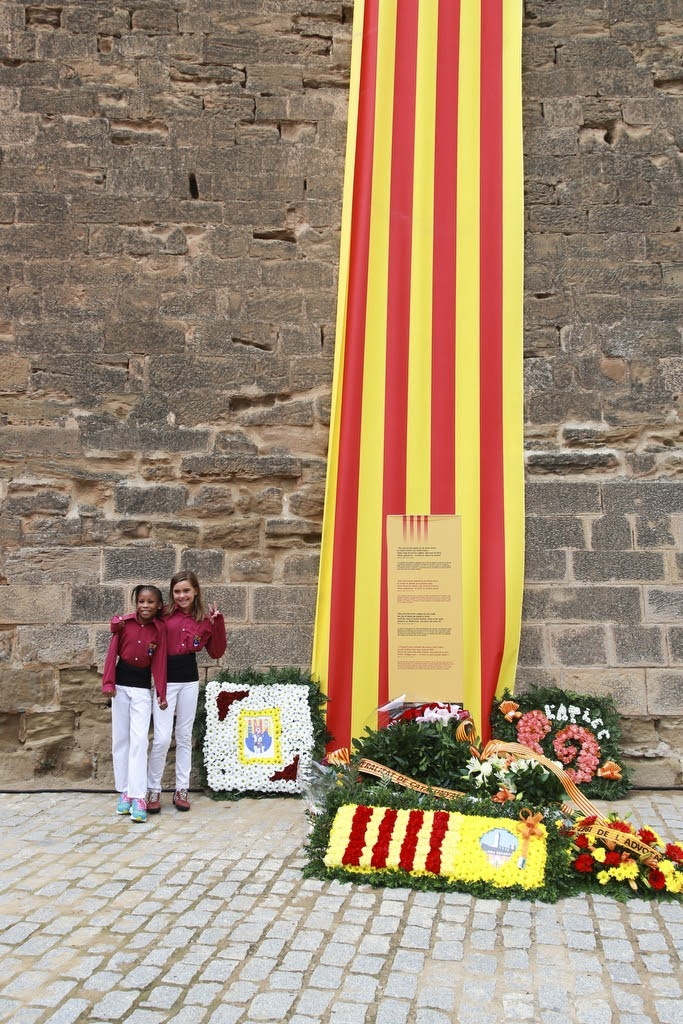 Ofrena floral Diada Nacional de Catalunya Seu Vella Lleida 11-09-2015 - 2015_09_11-Ofrena floral Seu Vella-26.JPG