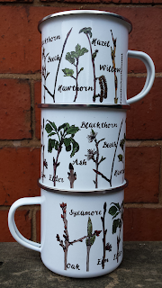Tree identification twig mug by Alice Draws The Line