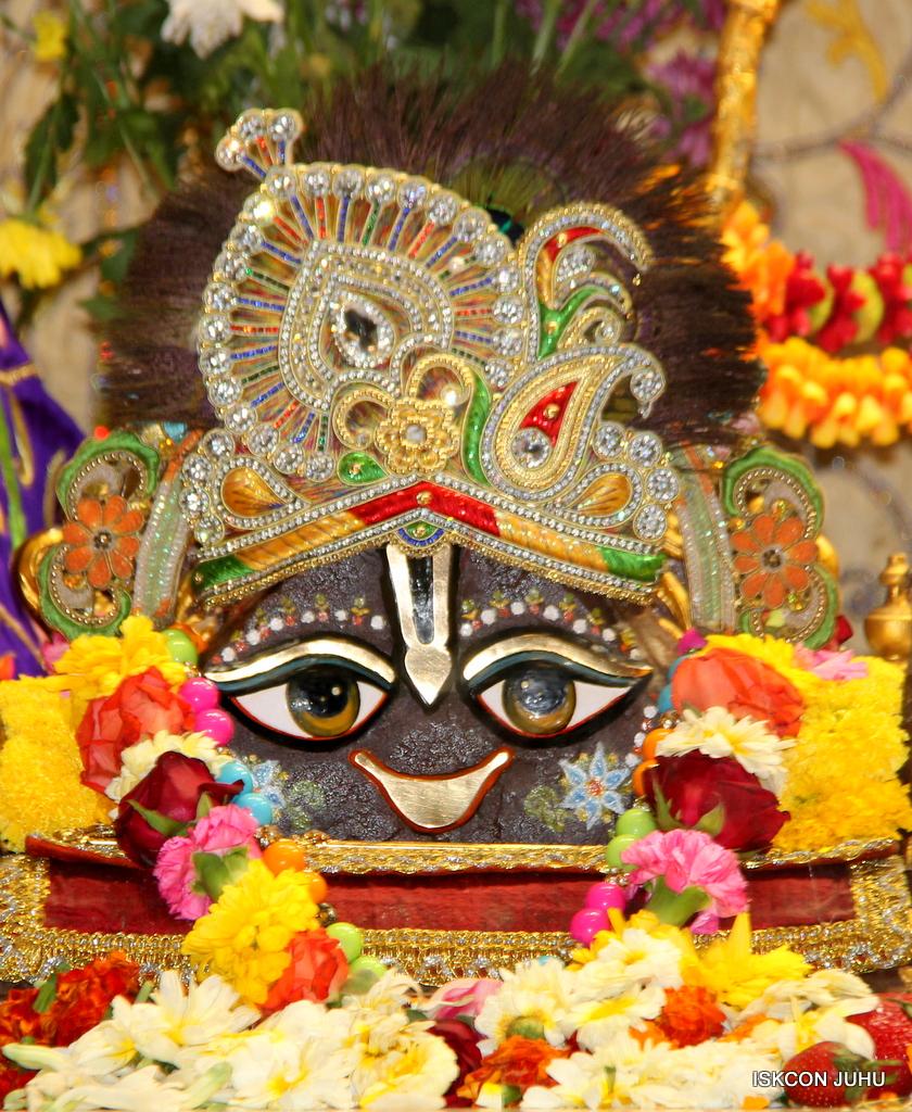 ISKCON Juhu Sringar Deity Drashan on 17th Jan 2017 (30)
