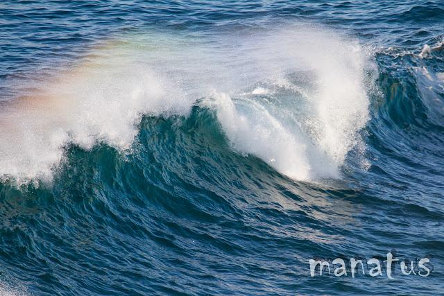manatus foto olas arcoiris
