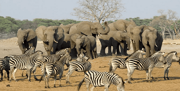THE MOST MAGICAL PLACES IN SOUTH AFRICA TO ATTRACTION ALL TRAVELERS TO IT 6