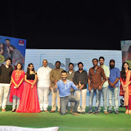 Padesaave Movie Audio Successmeet At Vizag Photos
