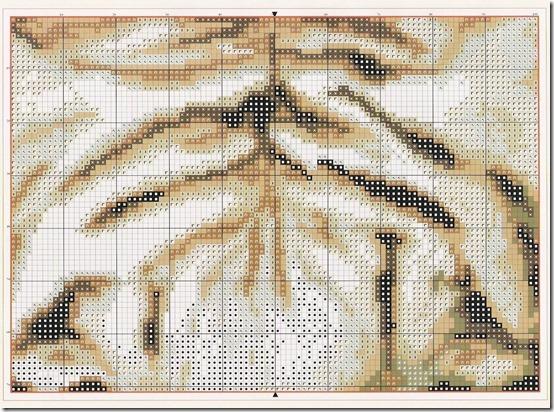 cuadro tigre  3 (3)