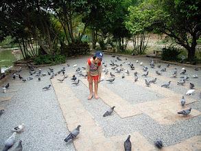 Photo: Pigeon Island
