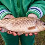 20150504_Fishing_Malynivka_023.jpg