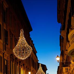 Christmas in Rome by Renata Apanaviciene - Public Holidays Christmas ( christmas time, rome, italy, merry christmas, city )