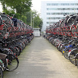 many bicycles in Holland in Amsterdam, Noord Holland, Netherlands