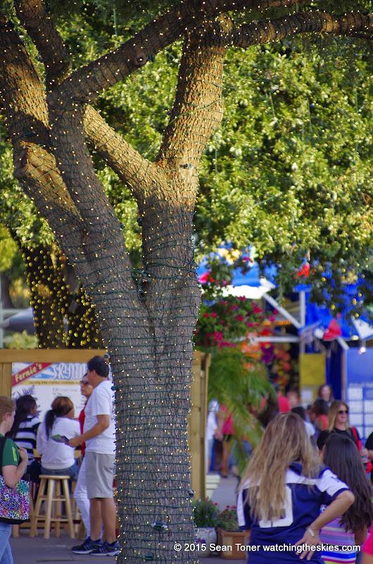 10-06-14 Texas State Fair - _IGP3267.JPG