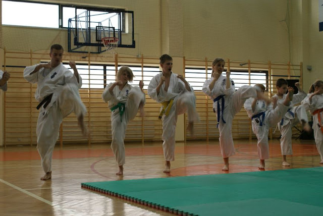 DO 2011 Pokaz karate - DSC00085_1.JPG
