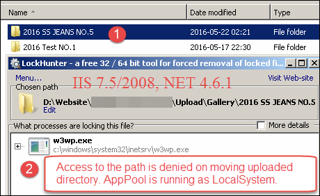 w3wp.exe Lock