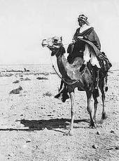 LAWRENCE OF ARABIA USING COMPASS LIKEONE WE HAVE - 170px-Lcamel.jpg
